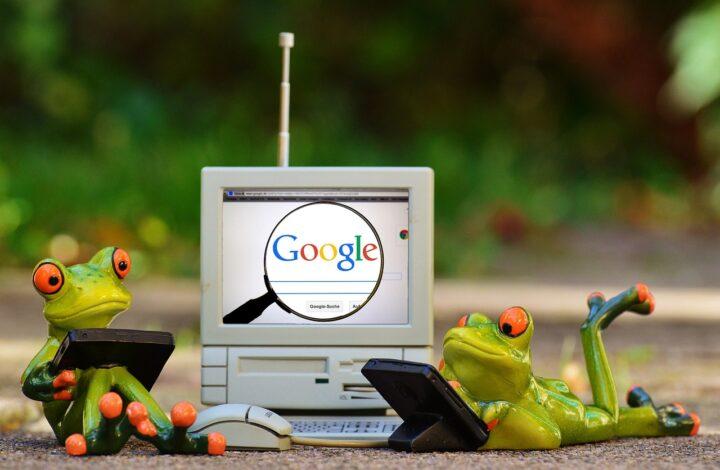 Googleとカエルの画像
